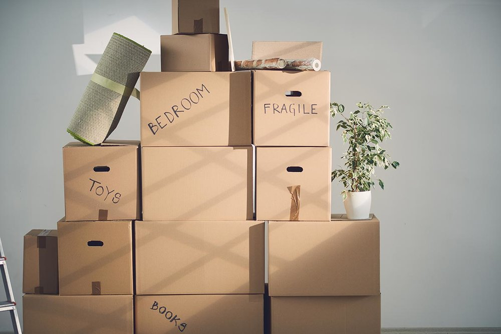 Afraid to Declutter? The Secret to Successful Downsizing Is Use To Your Head and Not Your Heart.