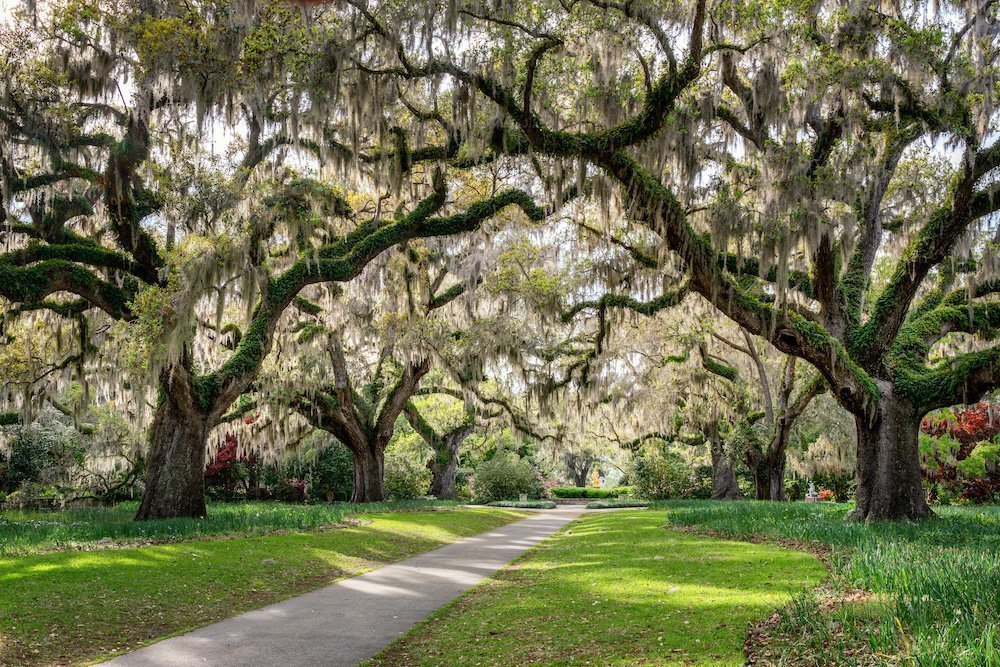 The Best of Beaufort South Carolina: Lowcountry Arts and Culture Fall Events