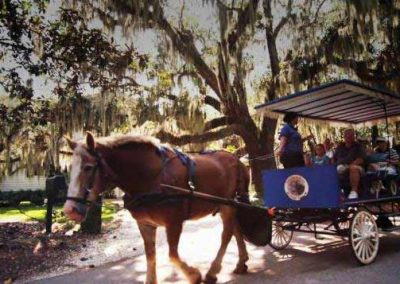 Southurn-Rose-Buggy-Tours-Historic-Beaufort
